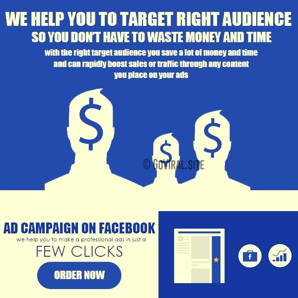 facebook ads audience